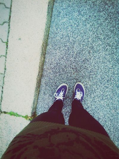 Vans Blue Walk Home