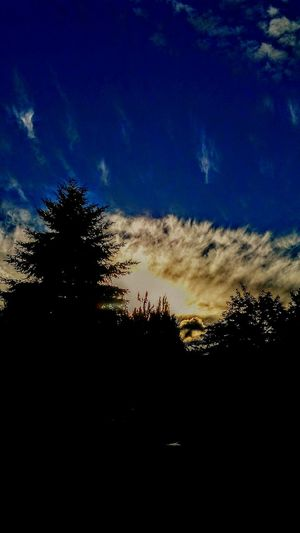 Oregon Sunset Still Life Photography GodBless July2016 Sky Beauty Sunset_collection Evening Sky Twilight Sky Beauty Of Nature My Point Of View Looking Up! What Does Peace Look Like To You?