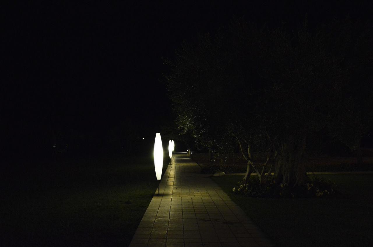 night, dark, illuminated, the way forward, nature, tree, no people, outdoors, beauty in nature