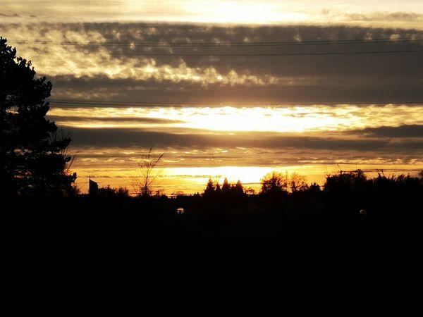 Die Sonne geht unter, genau wie meine Liebe und das Vertrauen in eine gewisse Person... Tree Sunset Silhouette Sunlight Sky Cloud - Sky
