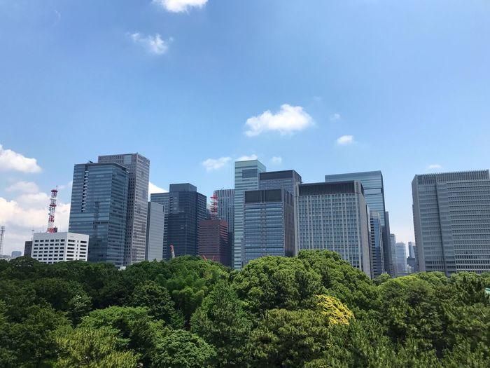 展望台(Tenboudai) Observation Decks Tree Building Exterior Buildings Green Color Outdoors Skyscraper No People City Cityscape Tokyo,Japan