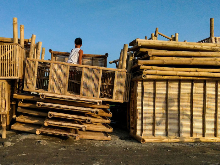 Rear view of man working on log stack against sky