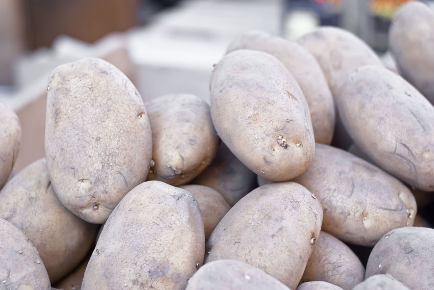 Pile of old potatoes for sale to the market Market Vegetables & Fruits Abundance Close-up Day Food Food And Drink Freshness Healthy Eating Indoors  Large Group Of Objects Market Place Nature No People Old Patata Patate Potatoes Vegetable