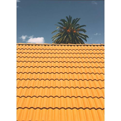 Low Angle View Of Roof And Palm Tree Against Sky