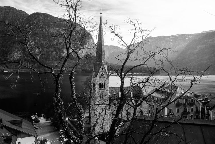 Architecture Bare Tree Black Building Exterior Built Structure Bw City Close-up Day Growth Lake Nature No People Outdoors Plant Sky Taking Photos Town On The Hill Tree Water