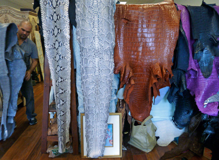 Accessories Alligator Animal Skin Day Fabric Fabric Detail Indoors  Leather Leather Craft Leather Detail No People Printed Python EyeEm Diversity Small Business Heroes