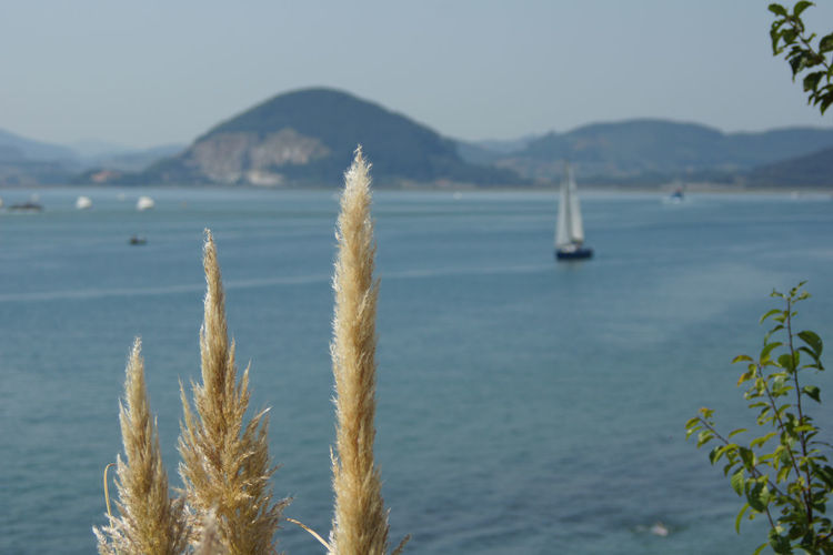 Sea view from santoña