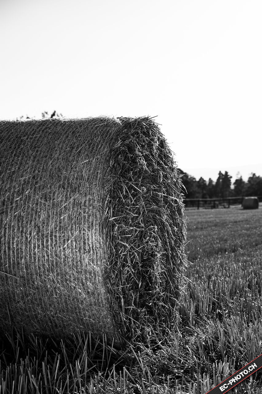 bale, field, hay, hay bale, agriculture, farm, rural scene, rolled up, harvesting, haystack, clear sky, landscape, sky, outdoors, no people, nature, day, tranquility, grass, beauty in nature, combine harvester