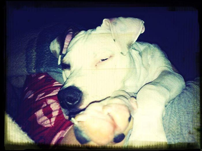 Slumpy