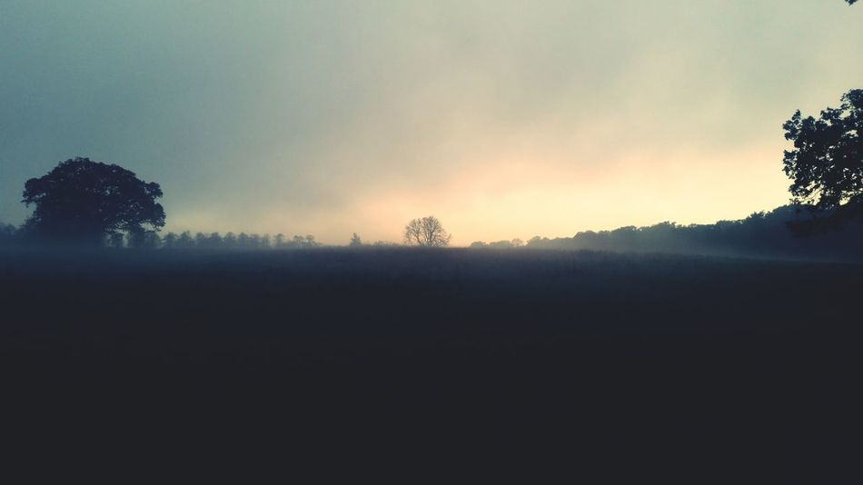 First Eyeem Photo Picoftheday Londonthroughmycam Autumn🍁🍁🍁 Londonlife MyLifeInPictures Eyeemgallery Naturelovers EyeEm Best Shots - Nature Clouds And Sky Natureshots Mist Firts Eyeem Photo