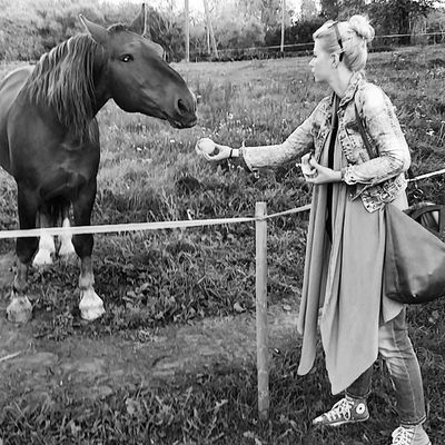 New friend Newfriendships Horses SharingIsCaring