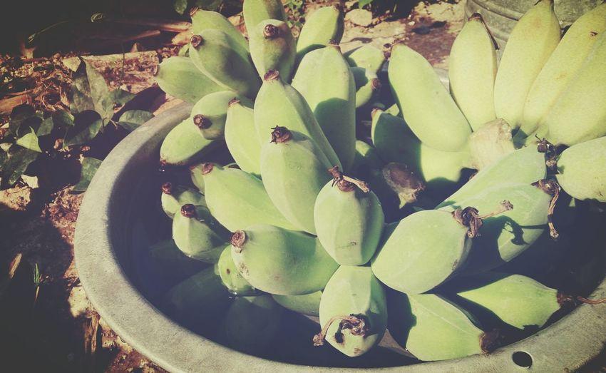 อยู่บ้านนอก..กินได้กินดี..สดๆจากสวนเราเอง.. Greenbananas Graden