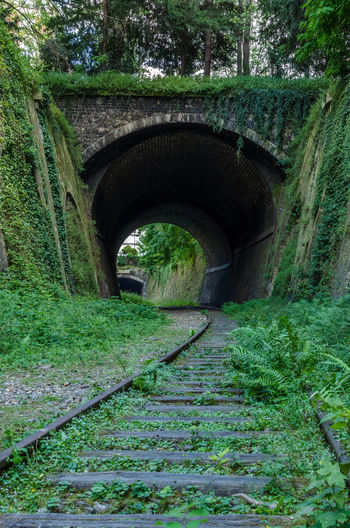 Petite Ceinture, Paris Abandoned Abandoned & Derelict Abandoned Buildings Abandoned Places Decay Decay And Dereliction Decaying EyeEm Best Shots Nature Takes It Back Nature Takes Over Outdoors Railroad Track Railway The Way Forward Urban Decay Urbex Urbexexplorer Urbexjunkies Urbexnetwork Urbexphotography