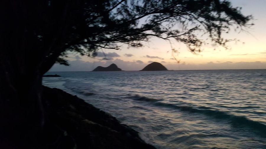 moks from bellows Kailua  Bellows Bellows Camping Grounds Moks Mokuloa Water Tree Sea Sunset Beach Sand Wave Silhouette Sun Awe