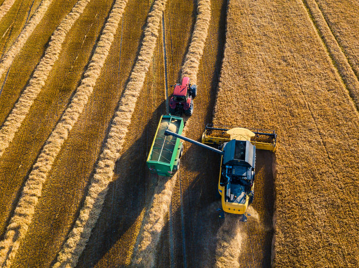 High angle view of tractors on agricultural field