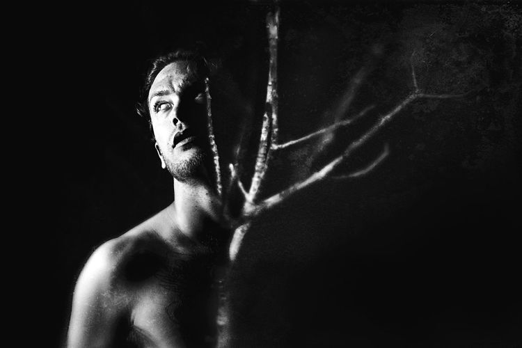 Composite black and white image of a middle-aged male with a tree branch coming out of his chest