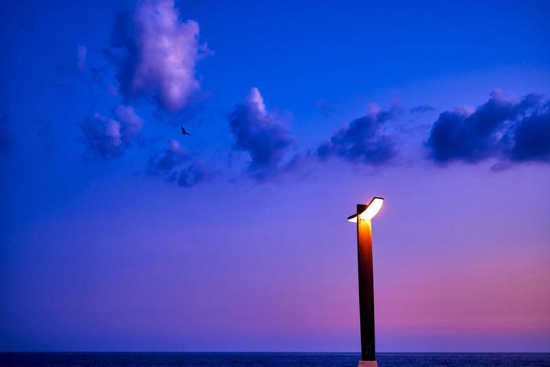 Bird flying over sea against blue sky