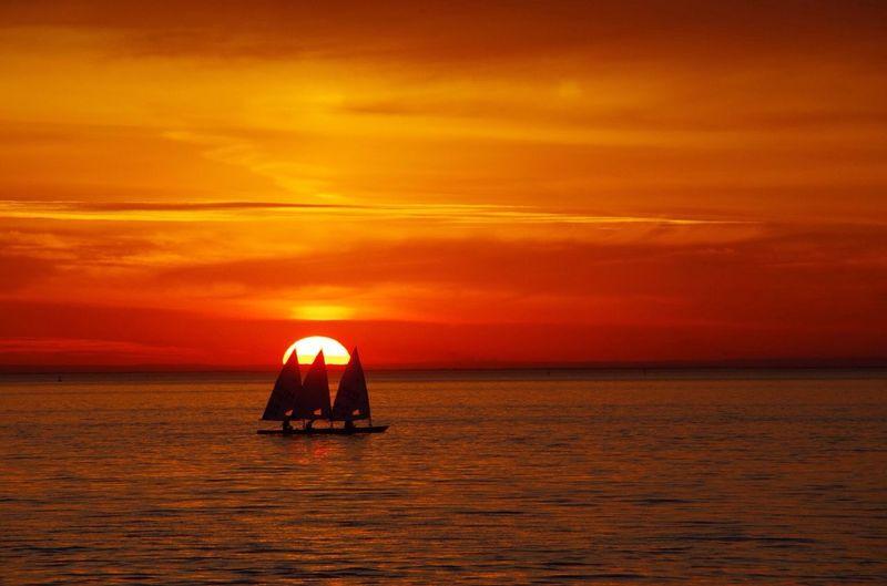 Men paddle a sailboat on sea at sunset