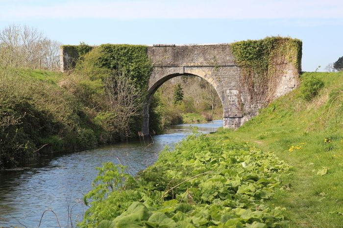 Arch Bridge Architecture Built Structure Ireland Landscape Nature Nature Walk Outdoors River Tranquil Scene Water