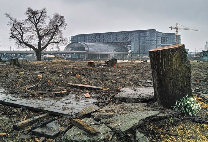 Public land was sold to investors, so the first thing was to cut down the trees...Chopped Wood Destroyed Flowers Hauptbahnhof Berlin How Do We Build The World? Melancholic Cityscapes No People Urban Landscape Urban Spring Fever