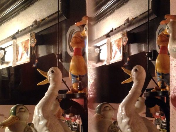 Poppy Camera Poppy3d Ducks Stereoptic
