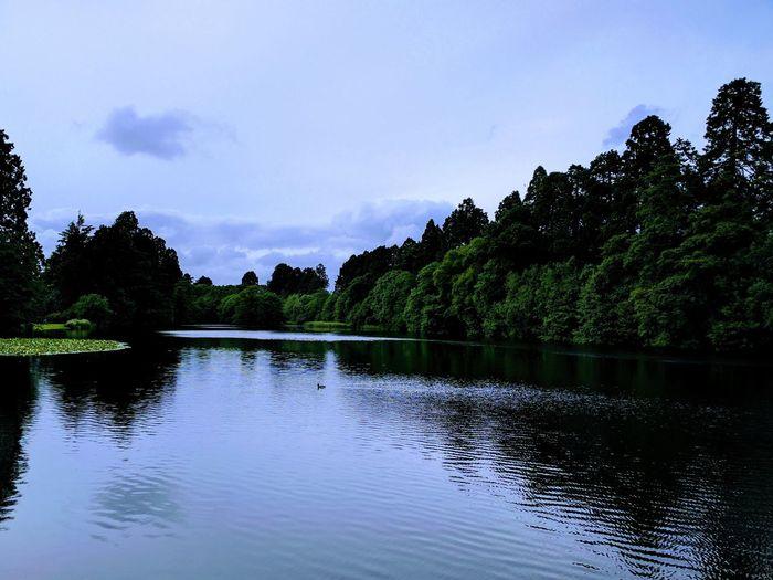 Tredegar Lake