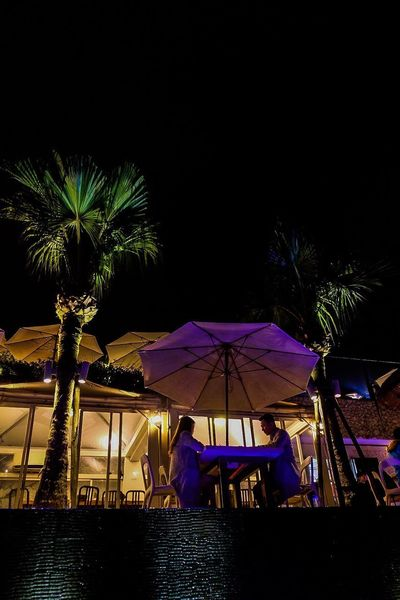 Romantic dining Night Dark Illuminated Water Tree Palm Tree Enjoyment Couple - Relationship Couple Lovers Table For Two Lifestyles Nightlife Nature Sky