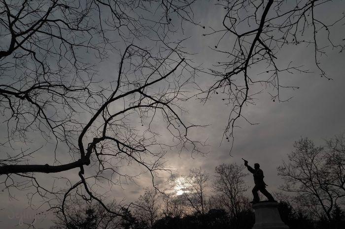 Negative Space Gwangju South Korea Korea Photography Trees Statue Nature