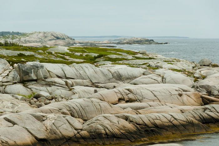 Granite Glacial Striation Granite Rocks Striations Beach Glacial Nature Sea
