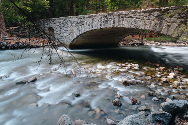 View of bridge over river in forest