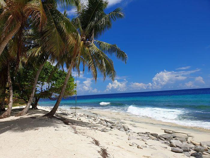 beach Sea Sea
