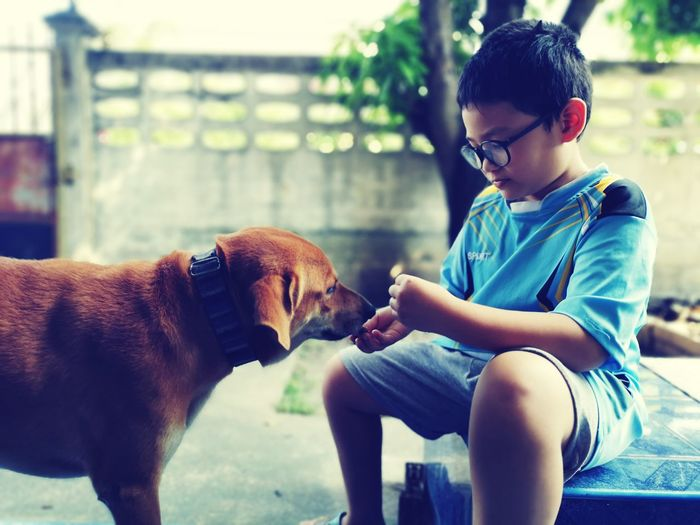 Boy playing with dog while sitting on floor