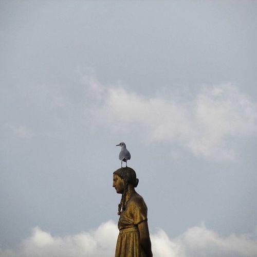Instagood Instalike Instapic Nice Instamood Paris Versailles Bird Statue Canon Like Interesting Strange Beautiful Like Love Alone Lonley VSCO Vscocam Vscogood
