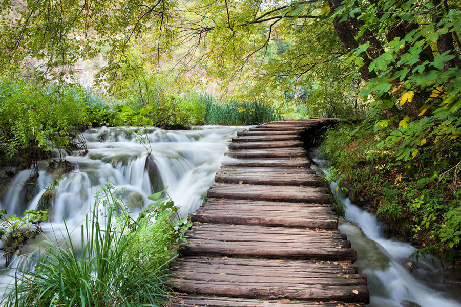 Wooden path across the stream in Plitvice Lakes National Park, Croatia Across Beauty In Nature Brook Creek Croatia Europe Footbridge Footpath Forest Nature Nature Photography Naturelovers No People Path Pathway Plitvice Plitvice Lakes National Park Plitvice National Park Stream Tranquility Travel Travel Photography Water Water_collection Wooden