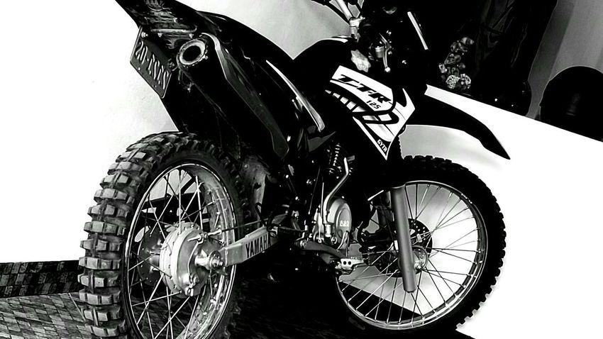 Yamaha Ttr Motocross Lovomotocross