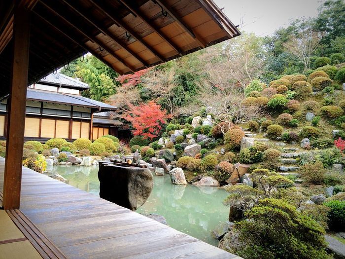 智積院 名勝庭園 東山 京都 Kyoto Kyoto, Japan Kyoto Garden Japanese Garden Travel Destinations Hello World Garden Relaxing Enjoying Life