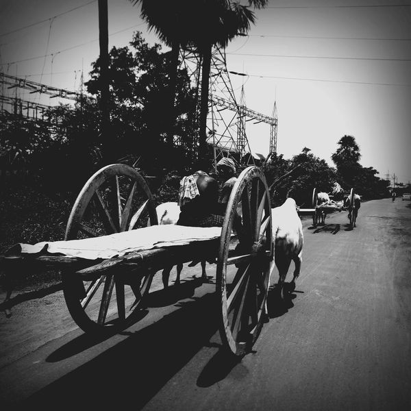 Bullock Cart Village Life Old Living Happiness😊 Oneplus2 Power Station Roadtrip