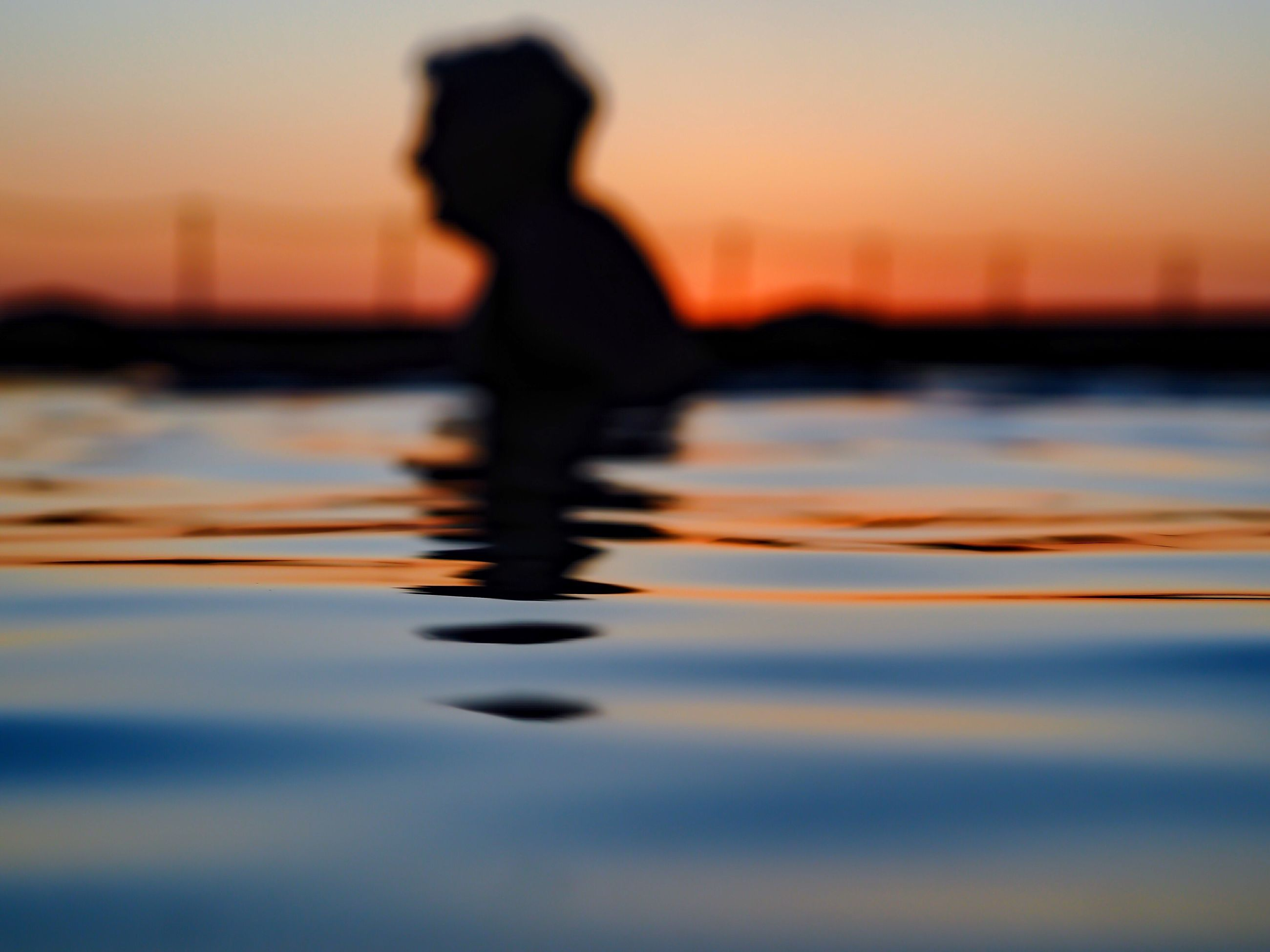 sunset, silhouette, reflection, water, orange color, one person, lifestyles, sea, nature, beauty in nature, outdoors, real people, sky, people, adult, day