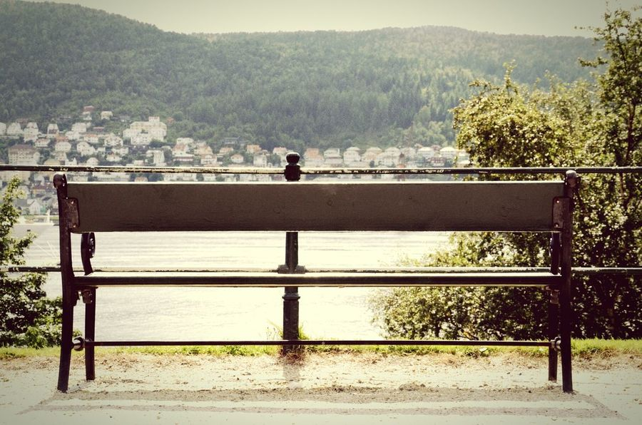 Bench Nature Photography Bergen,Norway
