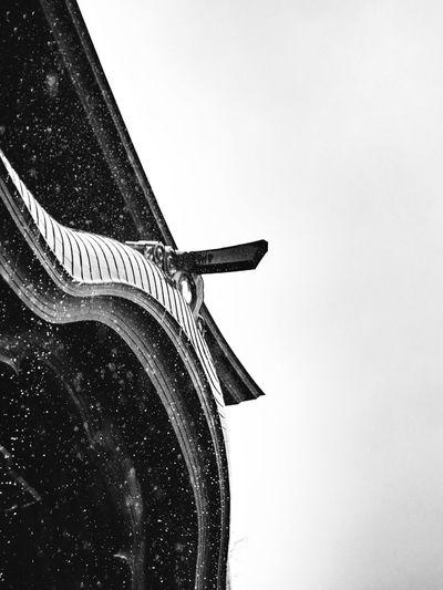 Someday again. Blackandwhite Eye4black&white  Shootermag_japan Eye4photography  Rain Raindrops Rainy Days