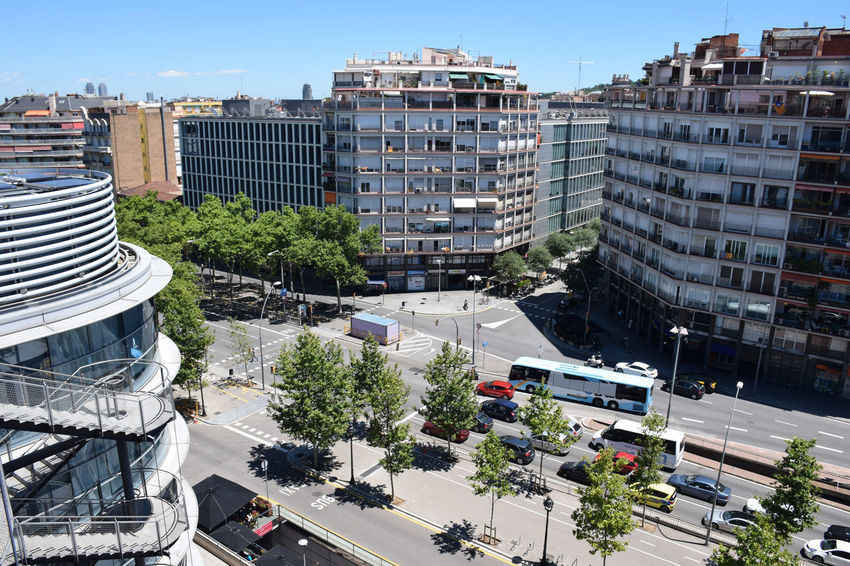 Great avenue in Barcelona city. Barcelona Public Transportation Urban Scene Architecture Building Exterior Built Structure Business Finance And Industry Car City Cityscape High Angle View Land Vehicle Mode Of Transportation Outdoors Street Sunlight Transportation