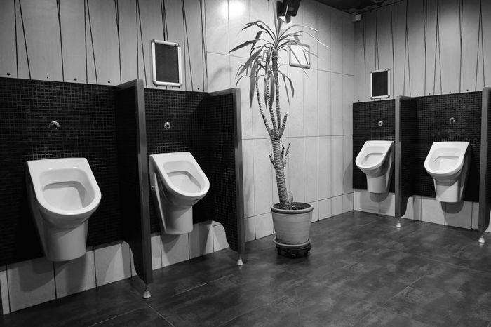 No People Hygiene Urinal Public Restroom Indoors  Convenience Toilet Public Building Bathroom