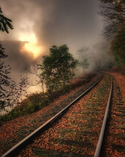 Railroad Track Rail Transportation Transportation The Way Forward Outdoors No People Scenics Tree Sunset Nature Day Sky Beauty In Nature Heat - Temperature Travel Photography Train Tracks Tranquility Rural Scene Landscape Beauty In Nature Connected By Travel