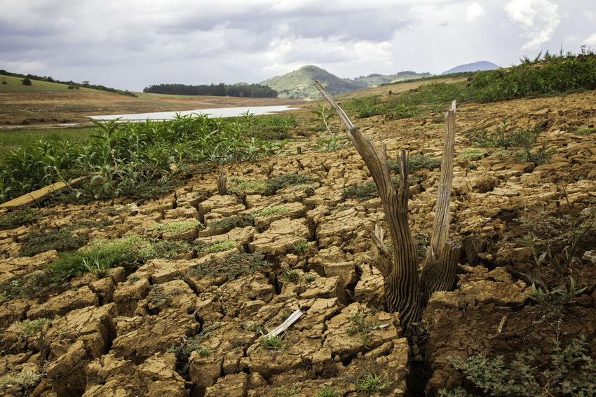 Brazil Desert Drought Warming Weather Arid Climate Climate Change Cloud - Sky Damm Danger Ecology Problem Global Warming Effect Harvest Irrigation Jaguari Landscape Mud Nature No Rain Scenics Waterless