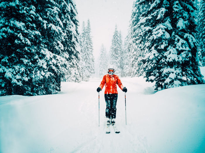 woman in red jacket skiing in the forest while it snows Skiing Ski Winter Sport Pine Tree Forest Snow White Alpine Alpine Landscape Track Snowing Woman Travel Sport Outdoors Activity Extreme Sports Fun Cold Temperature Alps Mountain Trees Fir Tree Tourism People Lifestyles Leisure Activity Cool Holiday Landscape Skier Adventure Vacations Destination Freeze Christmas Winter Tree Real People One Person Plant White Color Nature Day Clothing Full Length Covering Beauty In Nature Warm Clothing Ski-wear