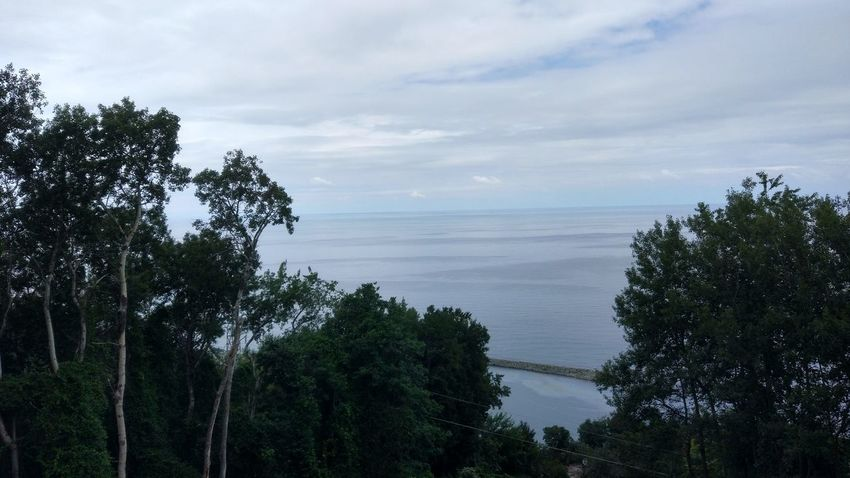 Blacksea Tea Rize Tree Cloud - Sky Nature Water Sky Beauty In Nature Sea Outdoors No People Scenics Day Horizon Over Water