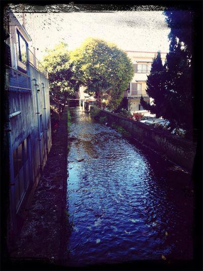 加屋町にて遭遇 Scenery