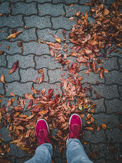 Low section of woman standing on footpath during autumn