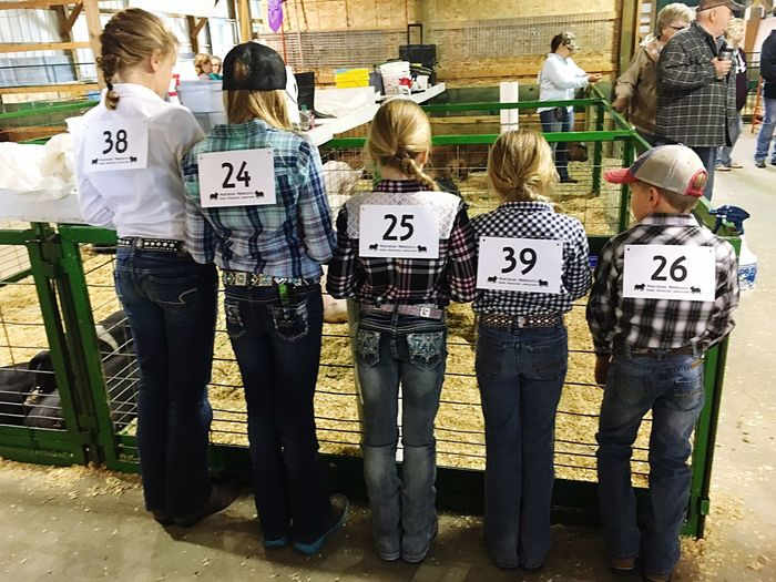 Rear View Full Length Standing Blond Hair Day Four Girls, One Boy Farm Life Show Kids Swine Show EyeEmNewHere