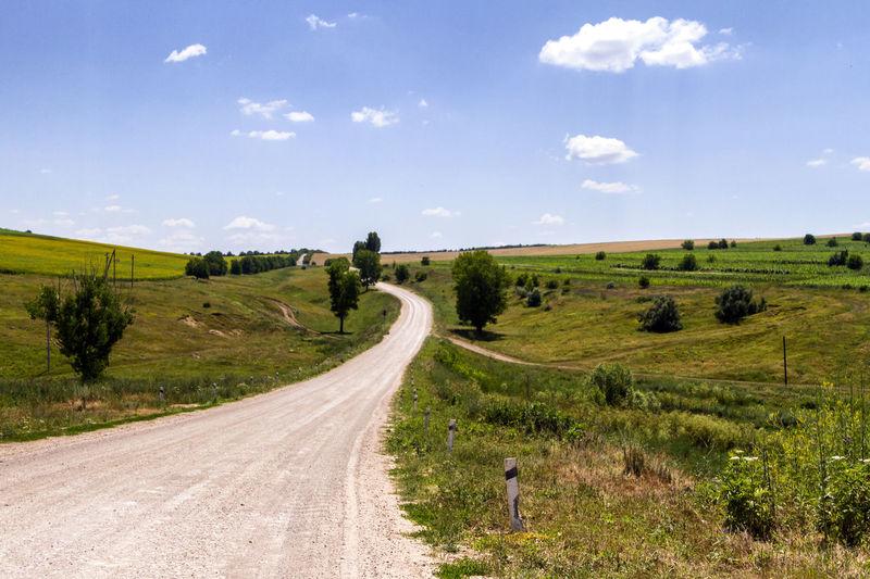 Road amidst green landscape